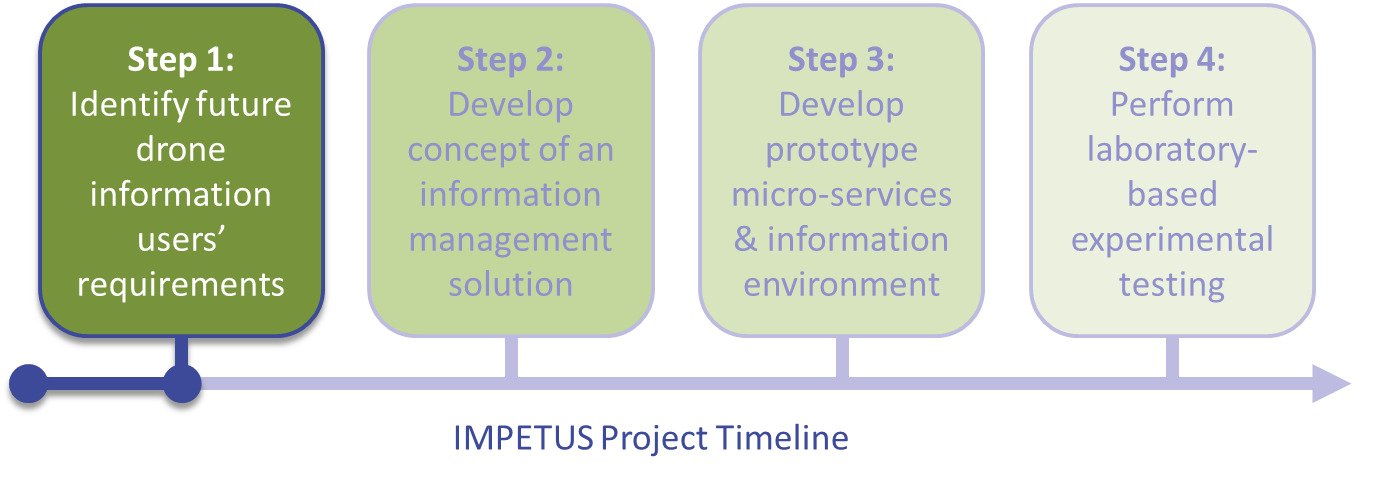 IMPETUS%20Project%20Timeline.png